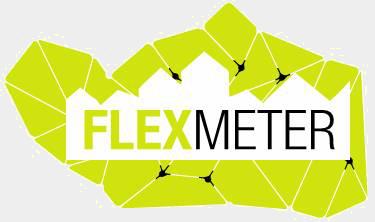 Flexmeter.png
